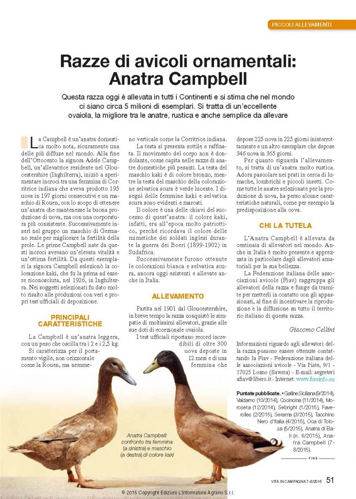 Anatra Campbell